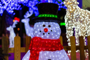 Holiday LED lights