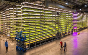Indoor Agriculture